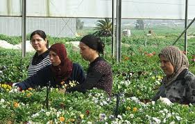women_agriculture